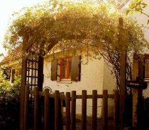 Home & Garden 038
